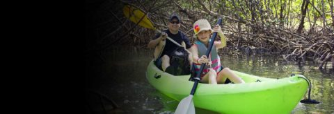 Amazing Kayak Tours and Rentals