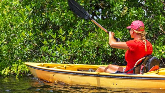 Ultimate Kayak SRQ Rentals & Tours Sarasota - Sarasota - Siesta Key - Lido