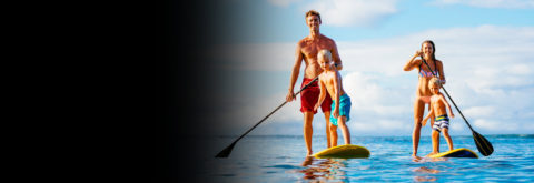 Paddle Board Rentals & Eco Tours